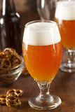 Refreshing Belgian Amber Ale Beer Stock Image