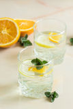 Refreshing birch juice with mint and lemon orange. A refreshing fruit juice with sliced lemon and orange, mint on a light background Royalty Free Stock Image