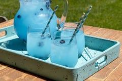 Refreshing Blueberry Lemonade Summer Drinks Stock Photography