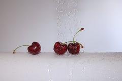 The refreshing cherry. Stock Photo