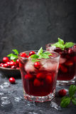 Refreshing cocktail with cranberry and ice, selective focus Royalty Free Stock Image