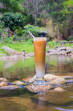 Refreshing coffee,relex in natural.  Royalty Free Stock Image
