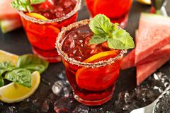 Citrus watermelon and basil margarita royalty free stock image
