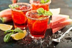 Citrus watermelon and basil margarita royalty free stock photography