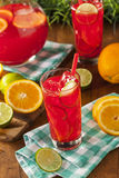Refreshing Cold Fruit Punch Stock Images