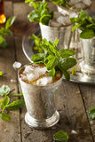 Refreshing Cold Mint Julep. For the Derby Royalty Free Stock Photo