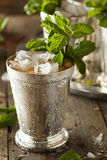 Refreshing Cold Mint Julep. For the Derby Stock Image
