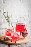 Refreshing drink with cranberries Royalty Free Stock Photos