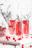 Refreshing drink with cranberries Stock Photo