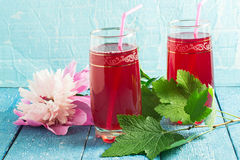 Refreshing drink with cranberry juice and peony Royalty Free Stock Photo