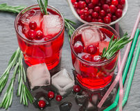 A refreshing drink of cranberry, rosemary and ice cubes Stock Image