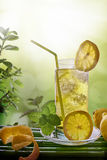 Refreshing drink with mint and lemon in nature  Royalty Free Stock Photos