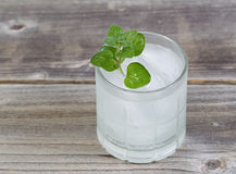 Refreshing Drink with Mint on top Stock Photography