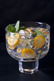 Refreshing drink Stock Images