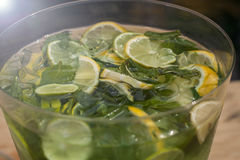 Refreshing drink with slices of cucumber, lemon and mint. Mojito Royalty Free Stock Photos