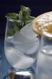 Refreshing drinks with ice. Refreshing drinks in a glass Royalty Free Stock Image