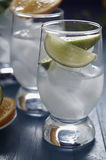 Refreshing drinks with ice. Refreshing drinks in a glass Royalty Free Stock Images