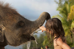 Refreshing an elephant. PHANG-NGA, THAILAND - JULY 04: Unidentified girl gives water to a baby elephant on July 04, 2012 at Khao Lak, Phang-nga, Thailand. Phang Stock Image