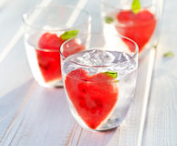 Refreshing flavored water with watermelon and mint Royalty Free Stock Photos