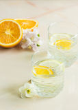 A refreshing fruit juice with sliced lemon and orange. Mint on a light background Royalty Free Stock Images