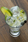 Refreshing gin tonic stock photography
