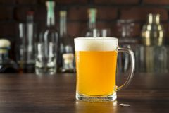 Refreshing Golden Beer Lager Royalty Free Stock Image