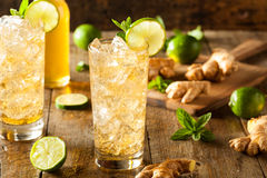 Refreshing Golden Ginger Beer Stock Photography