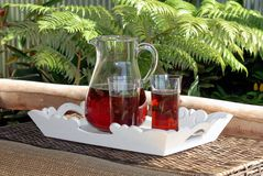 Refreshing Iced Tea. A refreshing tray of iced tea in a tropical setting Stock Images