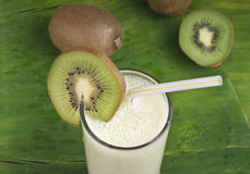 Refreshing kiwi smoothie milk shake Royalty Free Stock Images