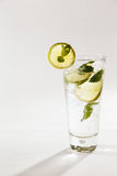 A refreshing lemon and lime spritser with mint royalty free stock photography