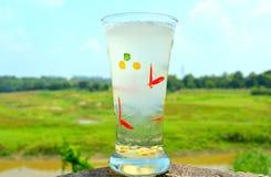 Refreshing lemonade. Drink generally taken in hot summer in India royalty free stock image