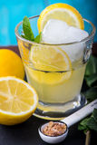 Refreshing lemonade with fresh citrus , mint and ice in glass Royalty Free Stock Image
