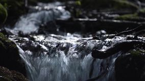 Refreshing mountain stream in the mountains among wet rocks stock video footage