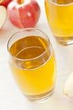 Refreshing Organic Apple Juice Royalty Free Stock Image