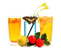Refreshing party drinks Stock Images