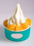 Refreshing Provocative tropical fruits smoothie. Yogurt icecream Stock Images