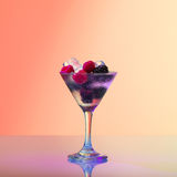 Refreshing raspberry and blackberry cocktail with ice Stock Photography