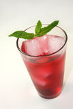 Refreshing Red Cocktail Beverage Royalty Free Stock Photos