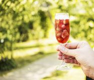Refreshing red drink with fruits and ice in one hand stock photo