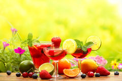 Refreshing sangria. (punch) with fruits Stock Images