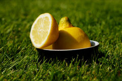 Refreshing Sliced Lemon Outdoors on Grass Stock Photo