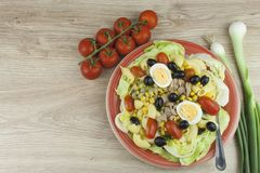 Refreshing summer dish, pasta with tuna, vegetables, olives and egg. Royalty Free Stock Images