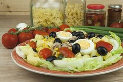 Refreshing summer dish, pasta with tuna, vegetables, olives and egg. Royalty Free Stock Photos