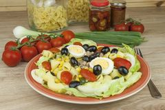 Refreshing summer dish, pasta with tuna, vegetables, olives and egg. Royalty Free Stock Photography