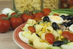 Refreshing summer dish, pasta with tuna, vegetables, olives and egg. Royalty Free Stock Image