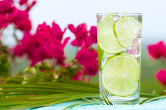 Refreshing Summer Drink. With slices of lime against tropical background Royalty Free Stock Images