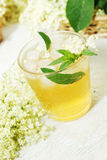 Refreshing summer drink. A cold refreshing summer drink made from elder flowers and mint royalty free stock image