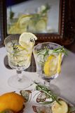 Refreshing summer drink with lemon.Thirst-quenching water. Refreshing summer drink with lemon. Thirst-quenching water Stock Images