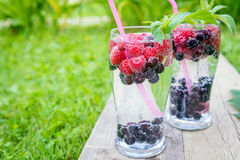 Free Refreshing Summer Drink With Sparkling Water And Fresh Berries Royalty Free Stock Photography - 91614307