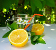 Refreshing summer homemade cocktail with lemon Royalty Free Stock Photography